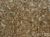 Granite Colors Phoenix giallo napoleone 2cm