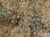 Granite Colors Phoenix golden dream 3cm