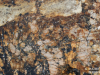 Granite Colors Phoenix Mascarello