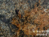 Granite Colors Phoenix Opala