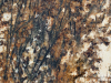 Granite Colors Phoenix Tempest Gold