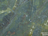 Granite colors Phoenix Verde Fantastico